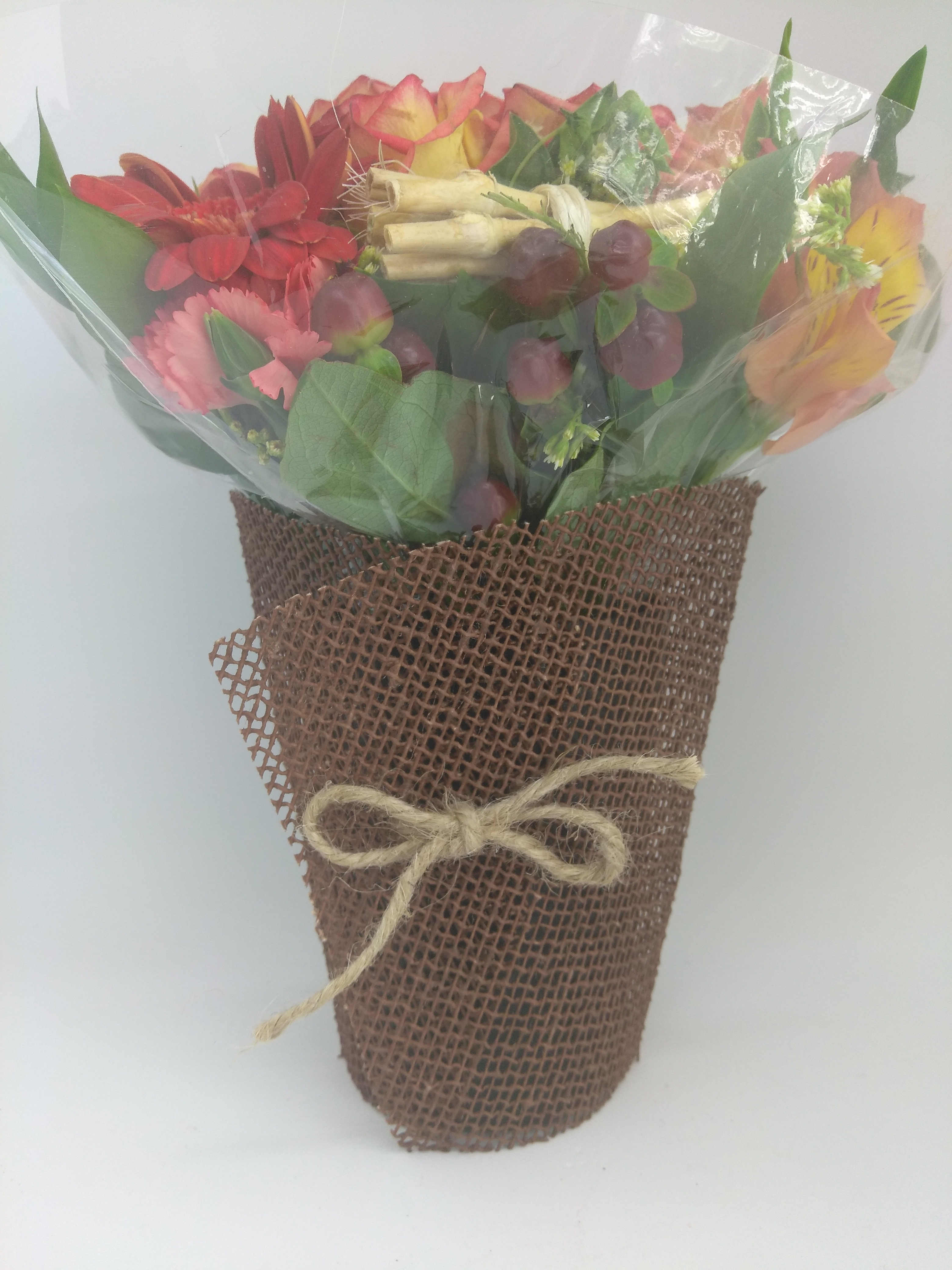 Cover Cup Small│ Naturatte │ color chocolate