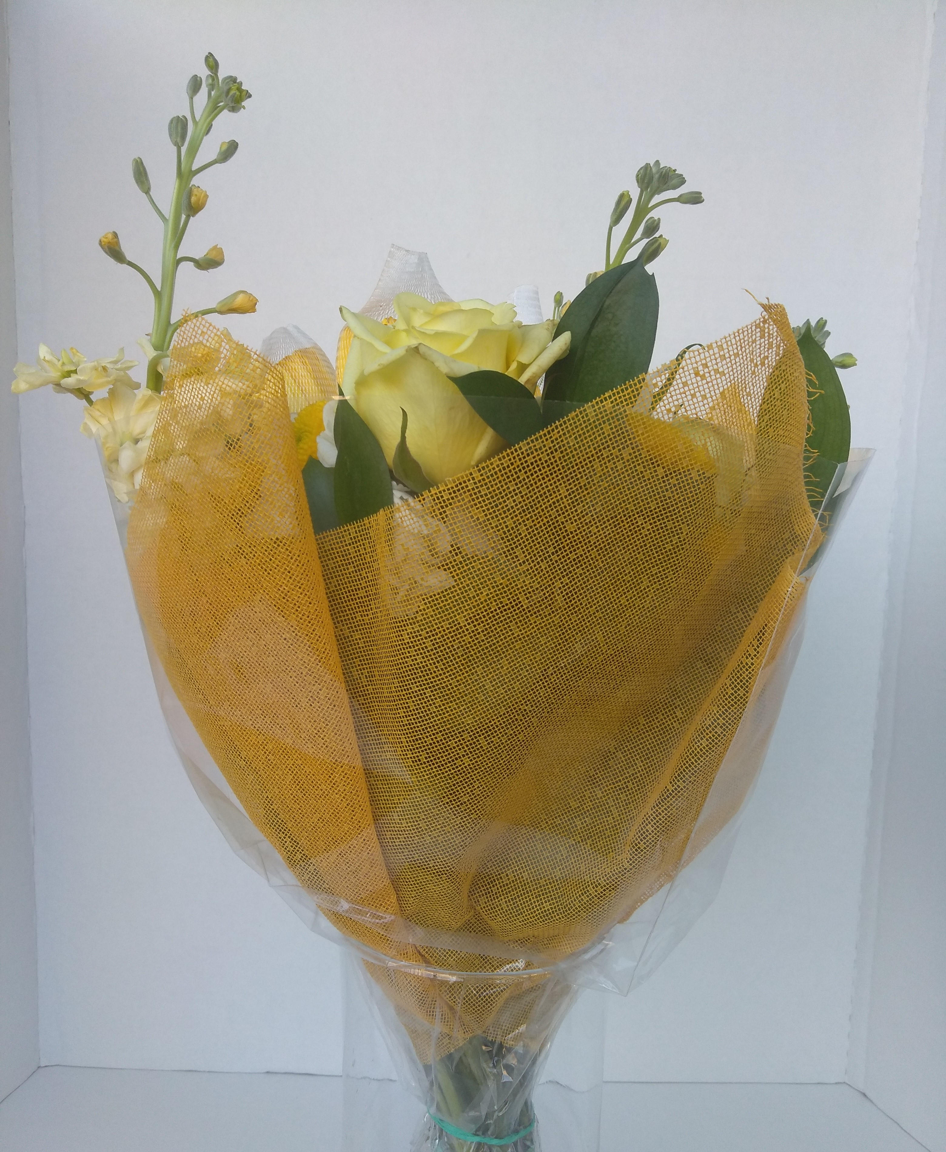 DM1 │ color: yellow fall │ size: 20