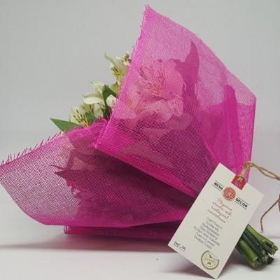 DM1 │ color: hot pink │size: 12
